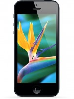 iphone_5_display-150x200