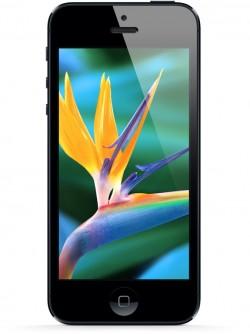 iphone_5_display-250x334