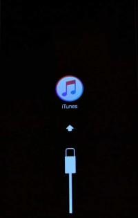 iTunes con cavo usb