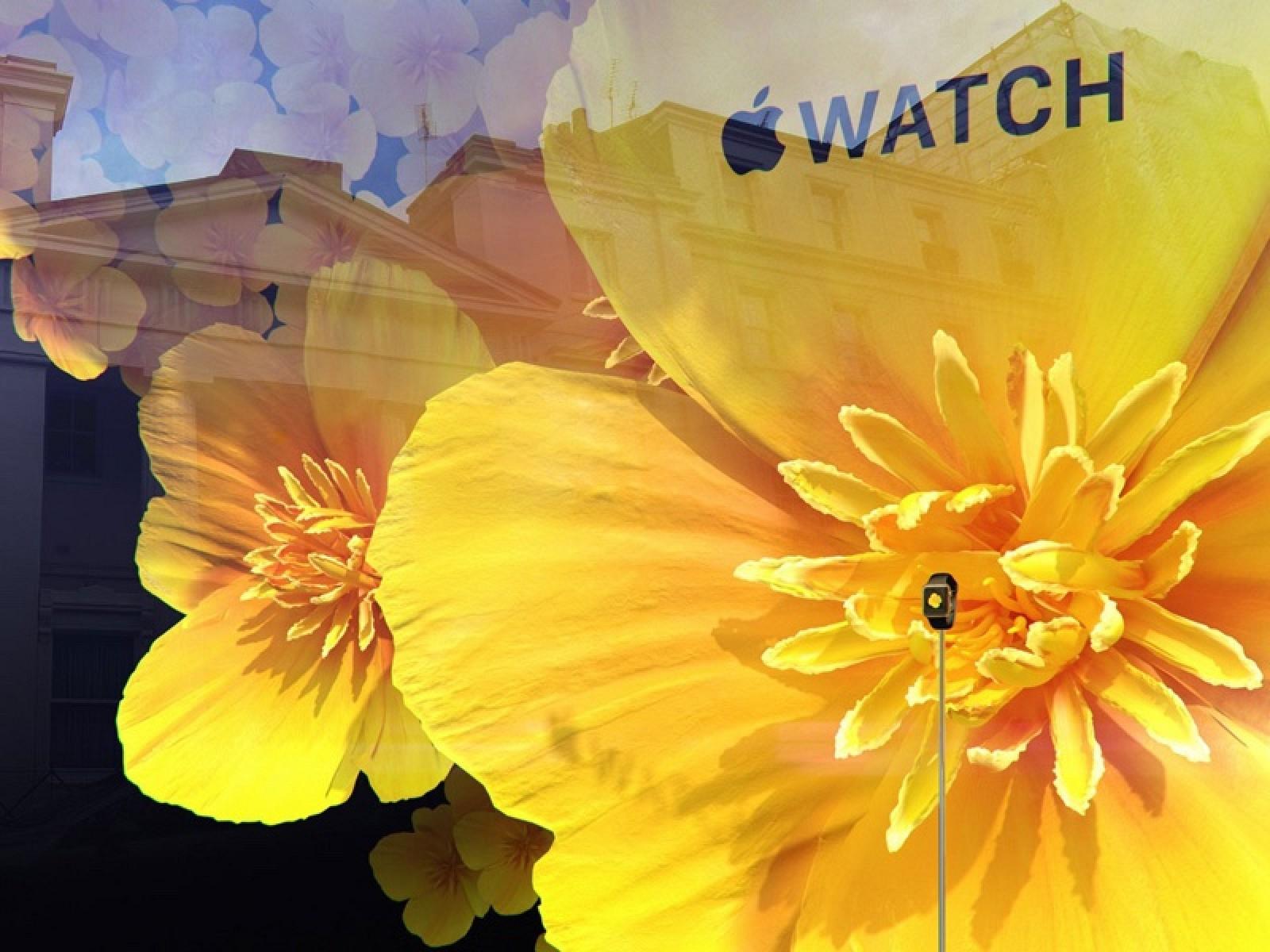 apple watch selfridges