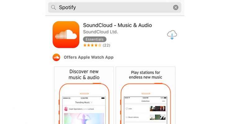 App-store-search-issues