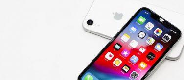 iPhone XR 2019: arrivano ulteriori conferme per la doppia fotocamera posteriore
